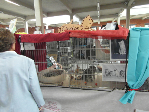 unser Ausstellungskäfig